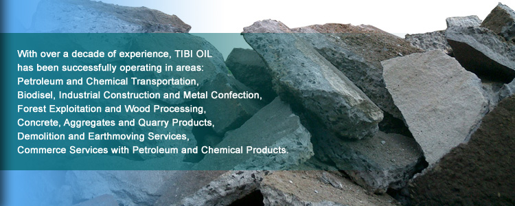 Tibi Oil - Biodiesel, Petroleum and Chemical Transportation, Industrial Construction, Forest Exploitation, Wood Processing, Concrete